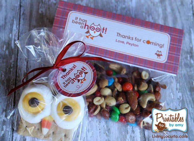 cute idea for favorsTreats Bags, Goodies Bags, Birthday Parties Theme, Owls Smores, Parties Favors, Owls Parties, Parties Ideas, Parties Printables, Owl Parties