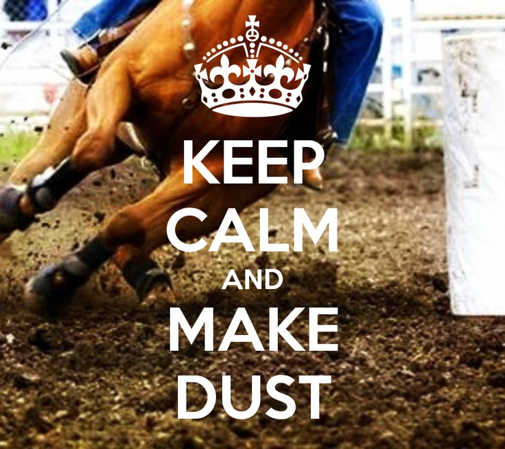 KEEP CALM AND MAKE DUST barrel racing made by original pinner