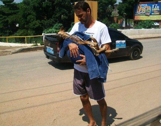 Das Leben von Straßenhund Francisco wäre sicher schnell zu Ende gewesen, wenn Wilson Martins Coutinho das unterernährte Tier nicht aufgenommen hätte. Was für eine unfassbare Geschichte. | unfassbar.es