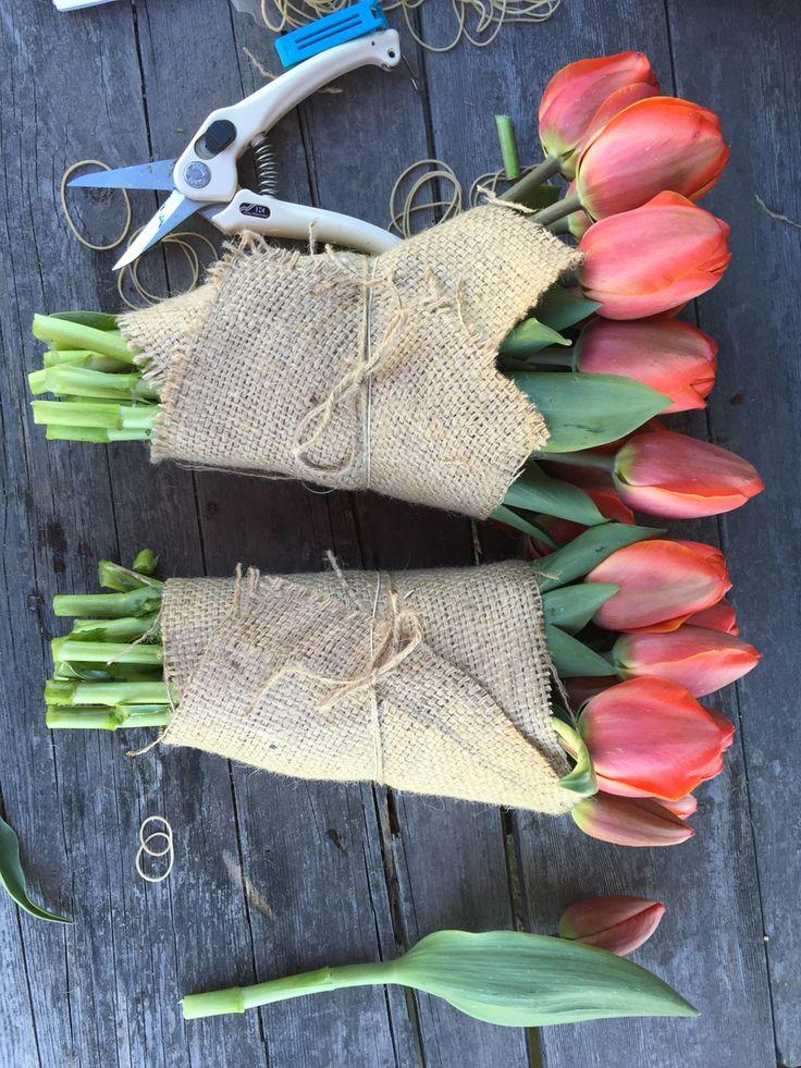 Organic tulips, Ad Rem, vildevioler.dk
