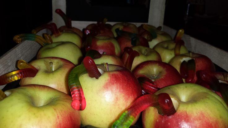 Appel met worm (wormen gekocht bij Jamin)