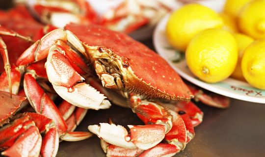New Plum District Offer!  Over 700 Sold in 2013! Fresh Seafood Delivery: Maine Lobster, Jumbo Shrimp, Crab & More! - http://www.stacyssavings.com/new-plum-district-offer-over-700-sold-in-2013-fresh-seafood-delivery-maine-lobster-jumbo-shrimp-crab-more/