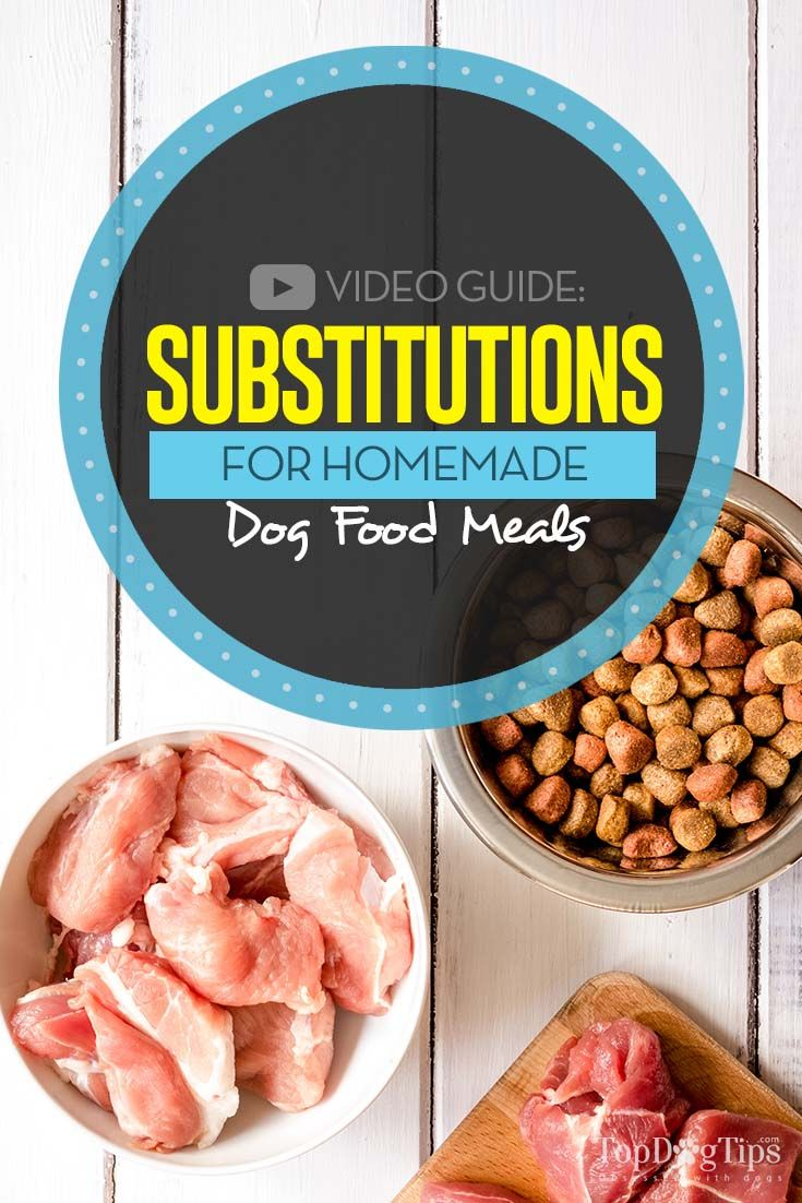 Substitutions For Homemade Dog Food Recipes Dog Food Recipes