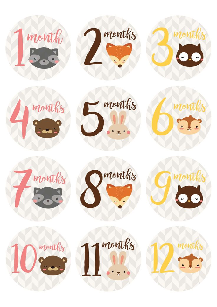 "*Free* printable baby milestone stickers from Countryside Amish Furniture. Print these adorable woodland animal milestone stickers on 2.5"" diameter labels or simply print them out on standard letter paper!"