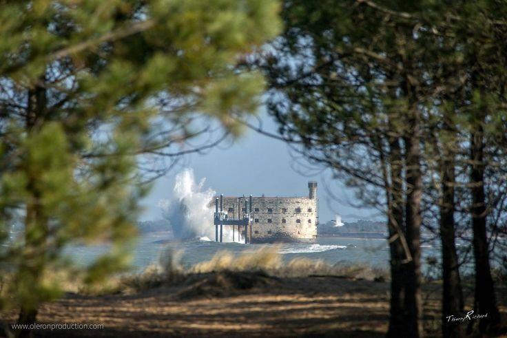 Fort Boyard par mer agitée !