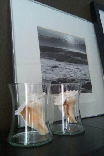 A Great Ocean Vacation Photo Coupled With Conch Shells In Glass Hurricanes So Pretty