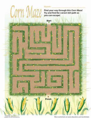 Fall Corn Maze | Maze, Autumn and Adventure