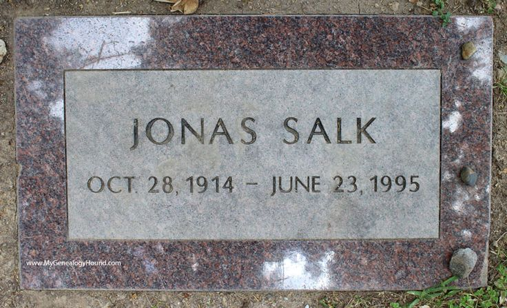 Jonas Salk, Grave and Tombstone, El Camino Memorial Park Cemetery, San Diego, California, photo, polio vaccine