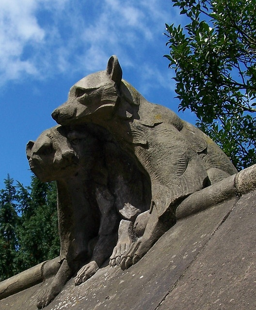 The Animal Wall, Cardiff Castle by the general's cat, via Flickr