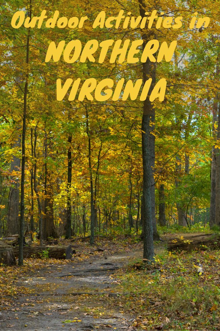 For Northern Activities Virginia In Singles