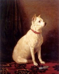 """Image source: """"Old English White Terrier"""" by Alfred Frank de Prades (19th century) - from [1]. Licensed under Public Domain via Wikimedia Commons"""