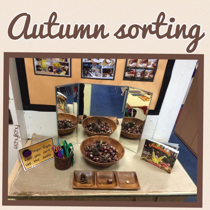 Autumn sorting. Conkers, fir cones, lentils and branch discs using sing tweezers