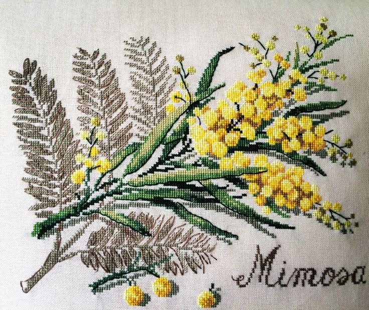 Mimoza Zarafeti