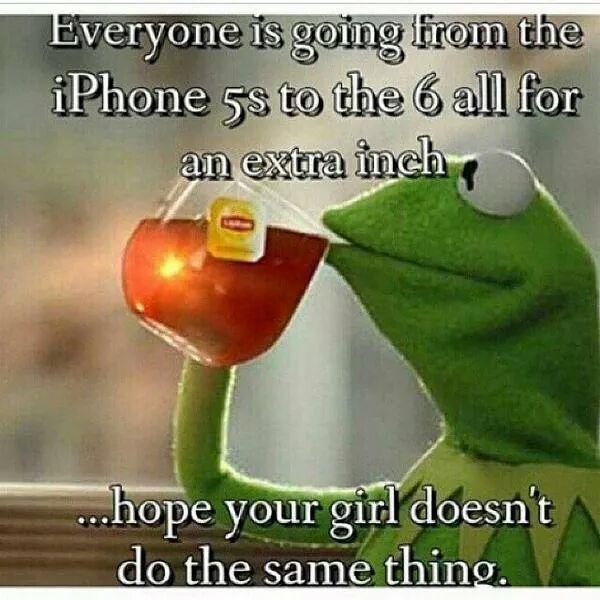 25+ Best Ideas About Kermit Gif On Pinterest