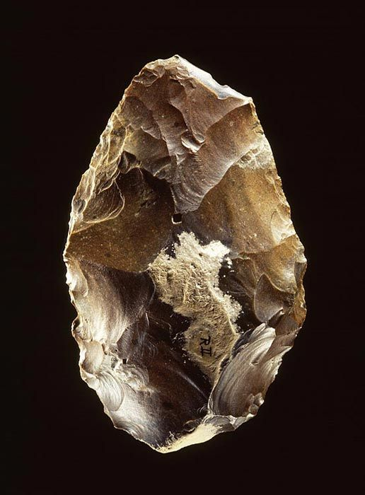 Hand-axe, dating from 300,000 to 150,000 BC. The hand-axe is regarded as the prehistoric equivalent of the Swiss Army knife. This tool had a great many uses: cutting branches, felling small trees, quartering and skinning animals, working skins, and so on. A hand-axe lasted a long time, for it was possible to sharpen the tool time and again. Learn more: http://www.rmo.nl/english/collection/highlights/netherlands-collections/hand-axe