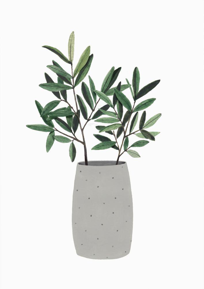 """다음 @Behance 프로젝트 확인: """"Plantas de invierno"""" https://www.behance.net/gallery/45357581/Plantas-de-invierno"""