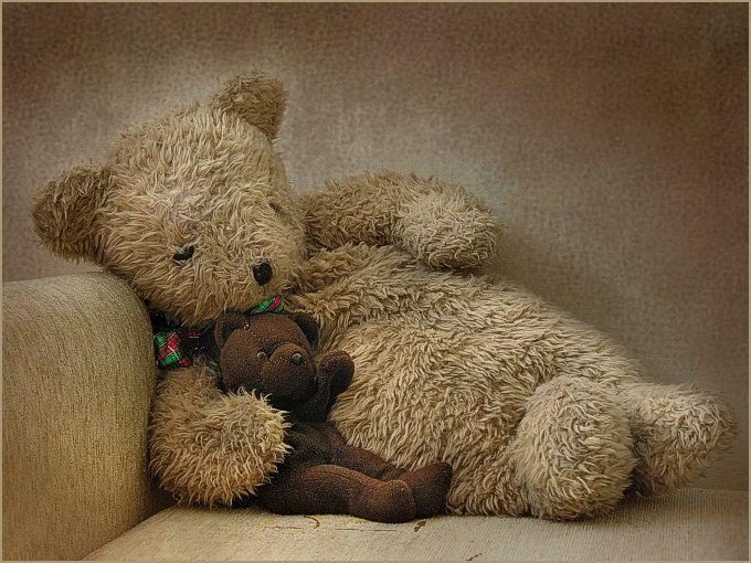 Cute Teddy #teddy, #teddies, #bears, #toys, https://facebook.com/apps/application.php?id=106186096099420