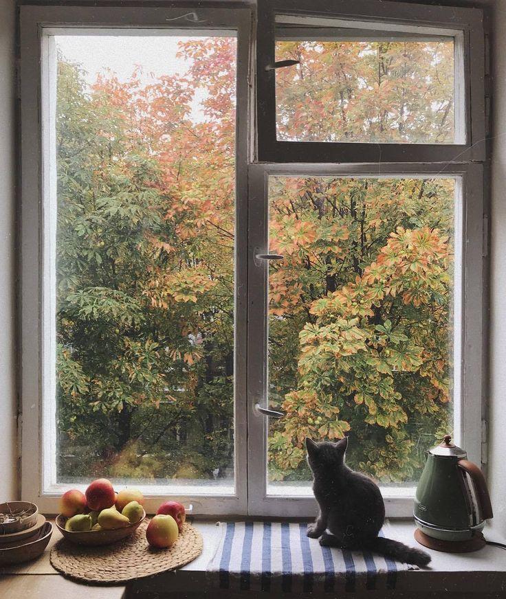 картинки осень за окном букеты выкладывайте свои