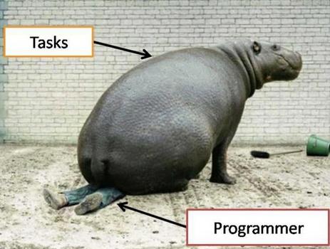 Poveri programmatori!