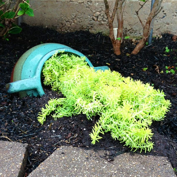 61 best images about spill pots on pinterest gardens for Flower pot out of waste material