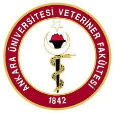 AVKIF Ordu Fermalı Av Köpekleri Mera Ve Kopoy Irk Yarışması (Sonuçları) | Avkif Turkey