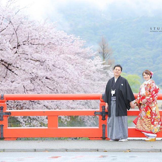 【iwamoto_yk】さんのInstagramをピンしています。 《年が明けるとあっと言う間に春が来ます。 この時期はすぐ過ぎていきますので逃さないで下さいね。雨でも素敵な京都ロケです♪ ✳︎ ✳︎ 年明けは1/7から京都店リニューアルオープンします♪ 皆様遊びに来て下さいね。 #結婚式準備 #weddingphotos #2017夏婚 #bridal #和装#日本中のプレ花嫁さんと繋がりたい #プレ花嫁 #フォロー大歓迎#ロケーションフォト #写真好きな人と繋がりたい #カメラ  #色打掛#和装ロケーション #春ロケーション# #japan #ポートレート#桜前撮り#和装髪型#スタジオtvb #岡崎#桜ロケ#桜#京都ロケ#笑顔#スタジオTVB京都 #2017秋婚 #ウェディングニュース》