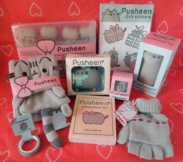 Pusheen Box Review