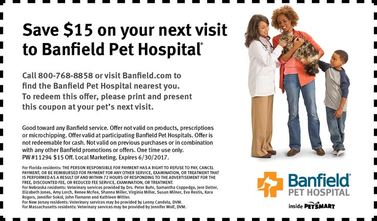 Web Coupon 15 Off 800 471 Pet Health Care Health Care Services Veterinary Hospital