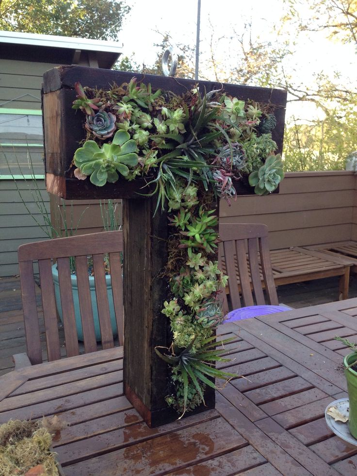 How to Build a Letter Form Vertical Succulent Box