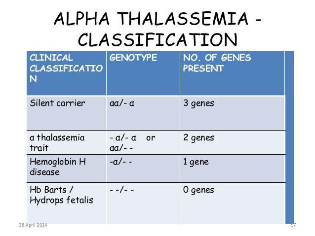 56 Best Thalassemia Images On Pinterest Bone Marrow Healthy Life