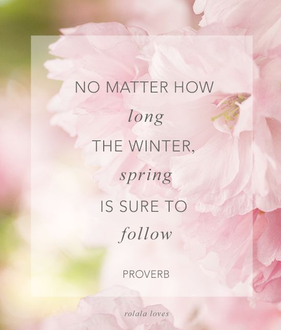 No matter how long the winter,spring is sure to follow - inspiration positive words