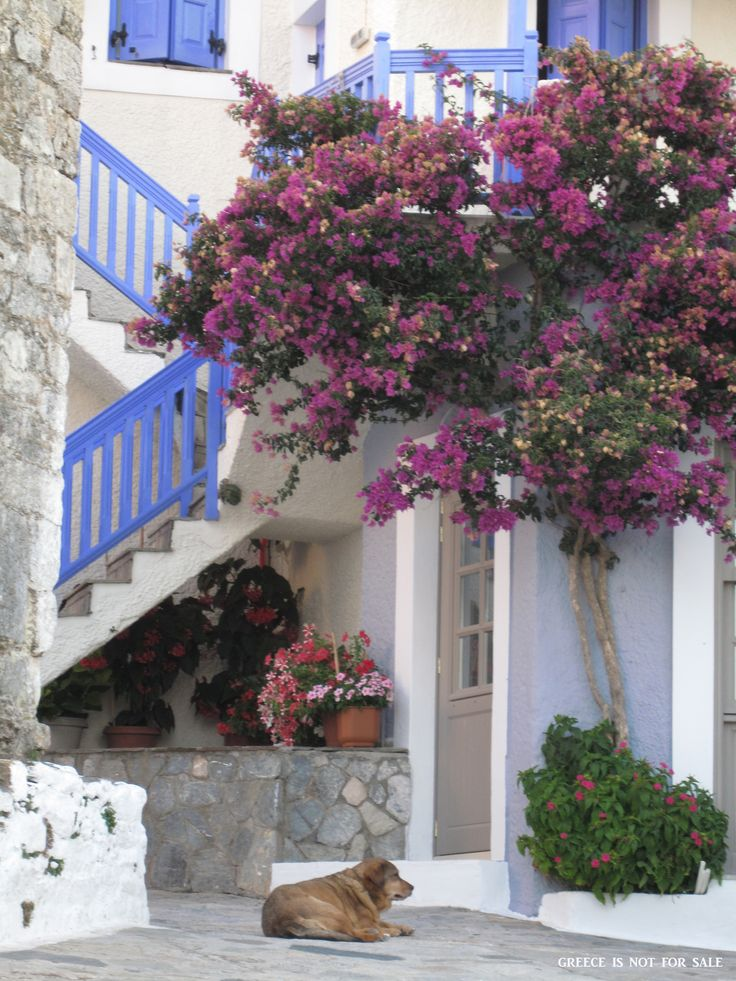 Old Town, Alonissos, Sporades, Greece.