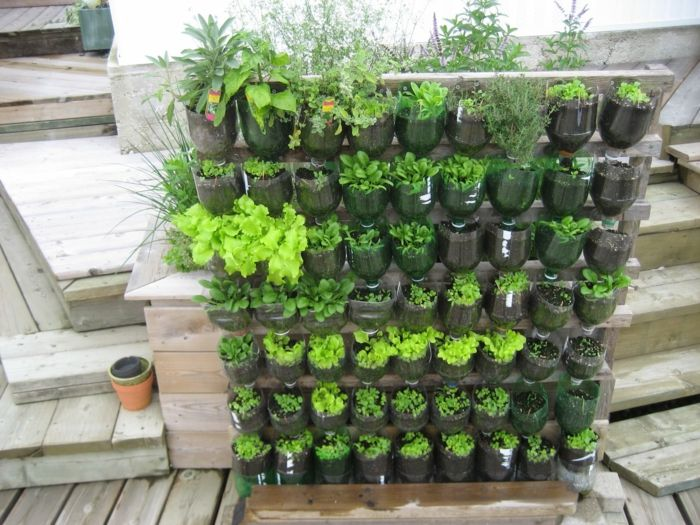 Pflanzenwand Selber Bauen Diy Projekt Mit Flaschen Leicht