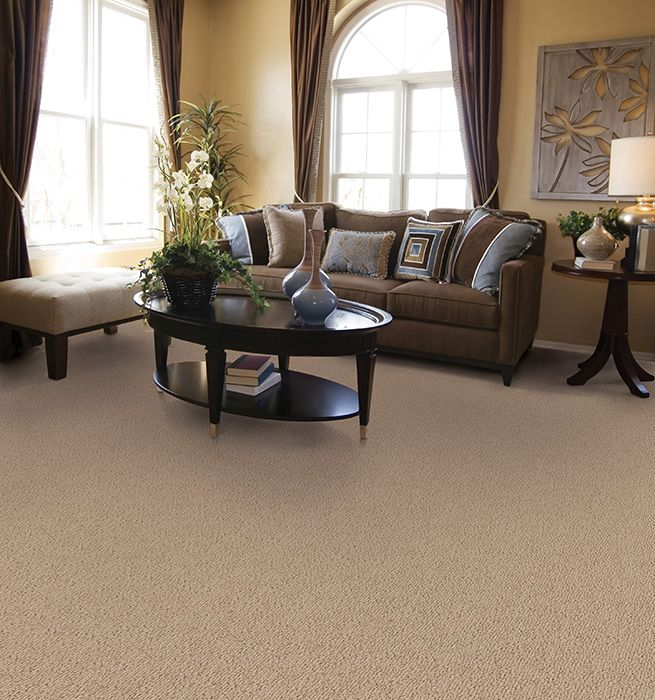 Elegant Color Carpet That Matches The Room Perfectly.