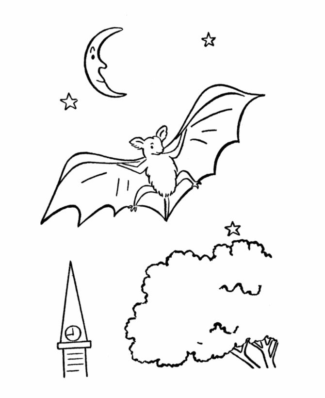wild animal coloring page bats coloring page