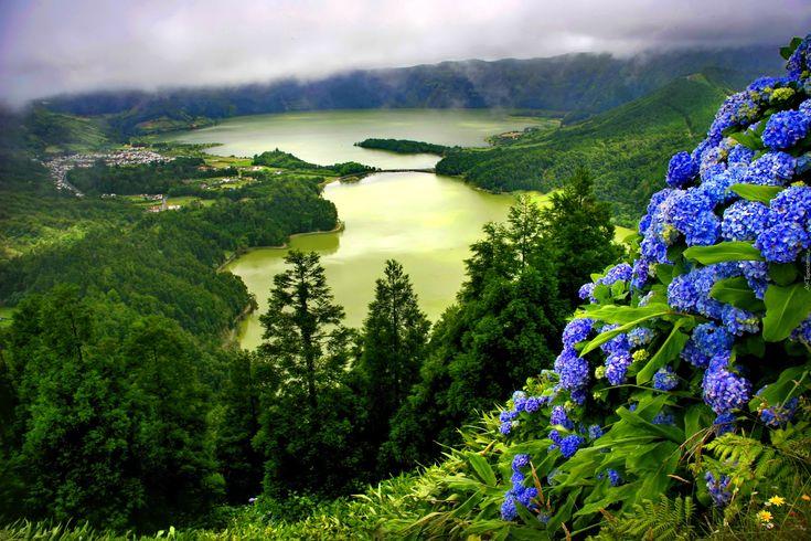 Edycja Tapety: Jeziora, Góry, Lasy, Mgła, Hortensje