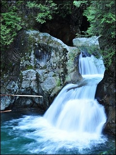 Lynn Canyon, North Van, BC