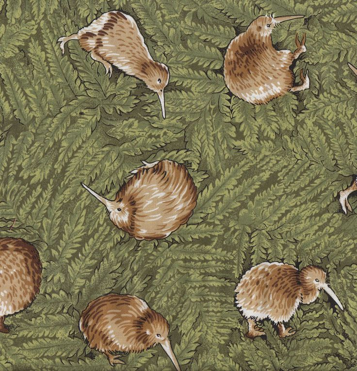 New Zealand Kiwi Birds Ferns Flora Wildlife NZ Quilt Fabric - Find a Fabric.  Available to purchase in Fat Quarters, Half Metre, 3/4 Metre, 1 Metre and so on.