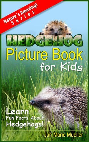 Hedgehogs: A Picture Book For Kids To Learn Fun Facts About Hedgehogs (Nature´s Amazing! Series)
