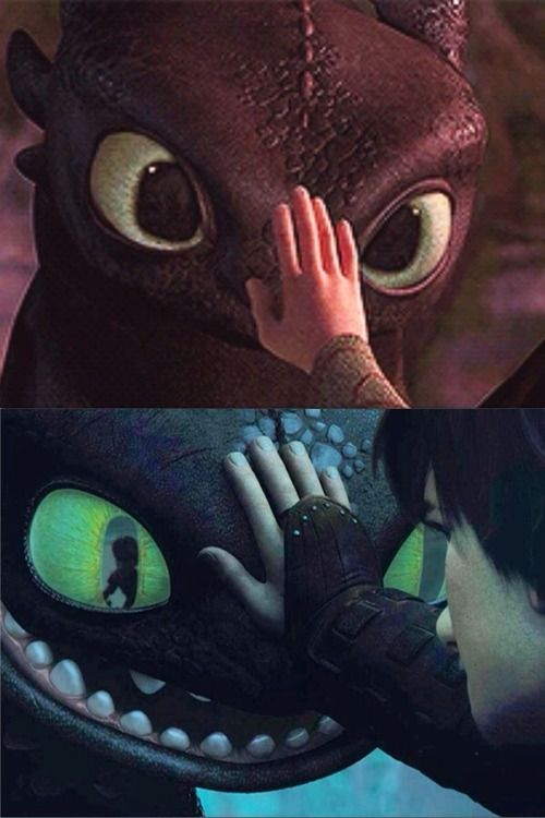 That is just sad. I never thought about the fact that they do it in both movies! HTTYD 1 and 2