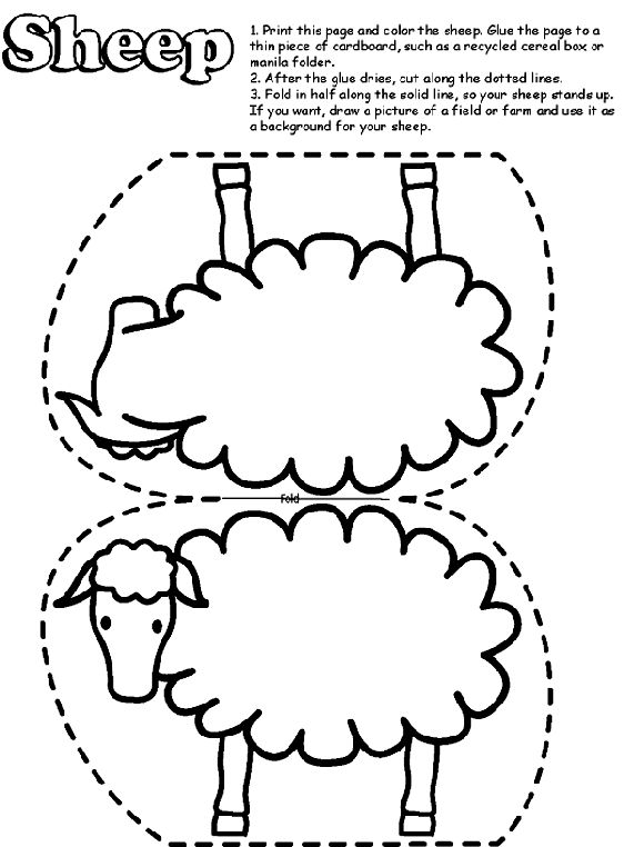 Coloring Pages Mammals Sheeps