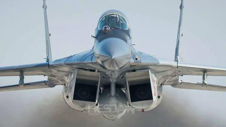 Air Force - Mikoyan Gurevich MiG-29 (Fulcrum-B)