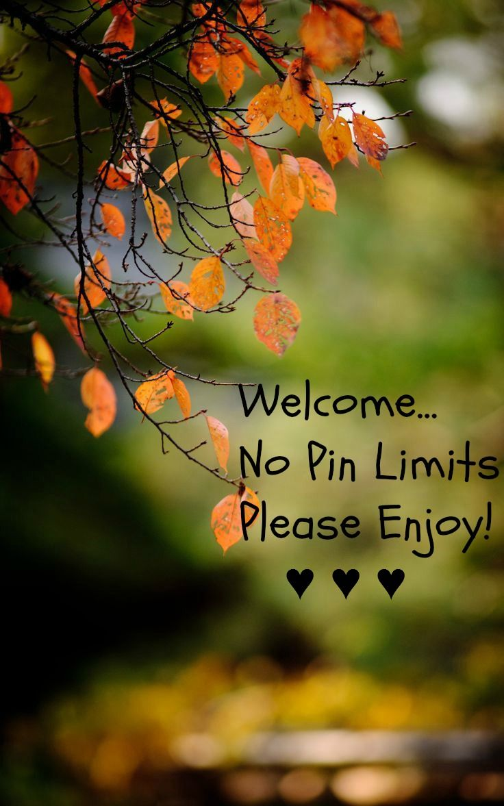 255 best Autumn Leaves. images on Pinterest   Autumn leaves, Fall ...