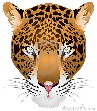 leopard-head-18727899.jpg (395×450)