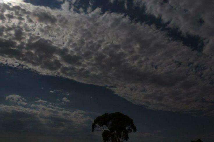Shadowlands se wolke - photo: Elmar J Roetz