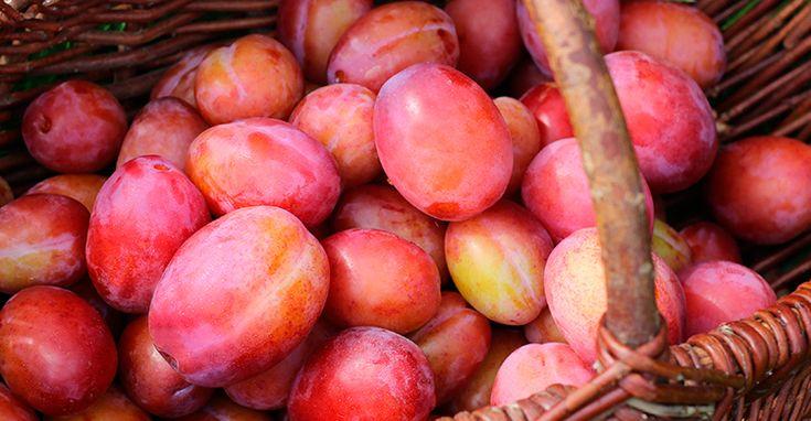 Lav lækker blommemarmelade med æbler og ingefær