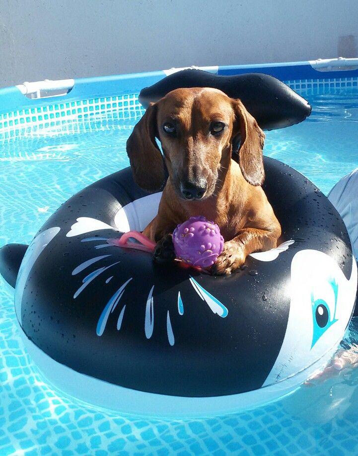 Atenea la princesa en la piscina
