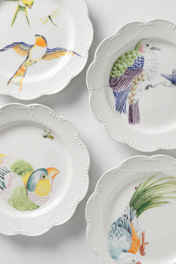 Decorative Dinner Plates 178 Best Kitchen Plates Images On Pinterest  Dishes Dish Sets