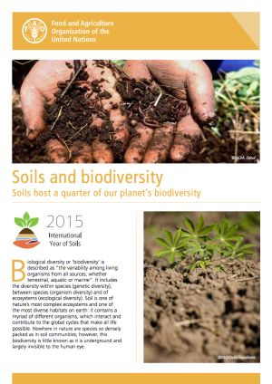 FAO Factsheet: Soil is one of nature's most complex ecosystems and one of the most diverse habitats on earth: it contains a myriad of different organisms, which interact and contribute to the global cycles that make all life possible.