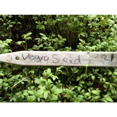 Vegro Seed Compost - 60 Litres